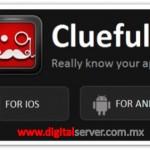 Clueful - DigitalServer