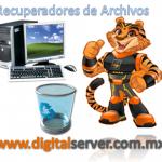 Recuperadores De Archivos - DigitalServer